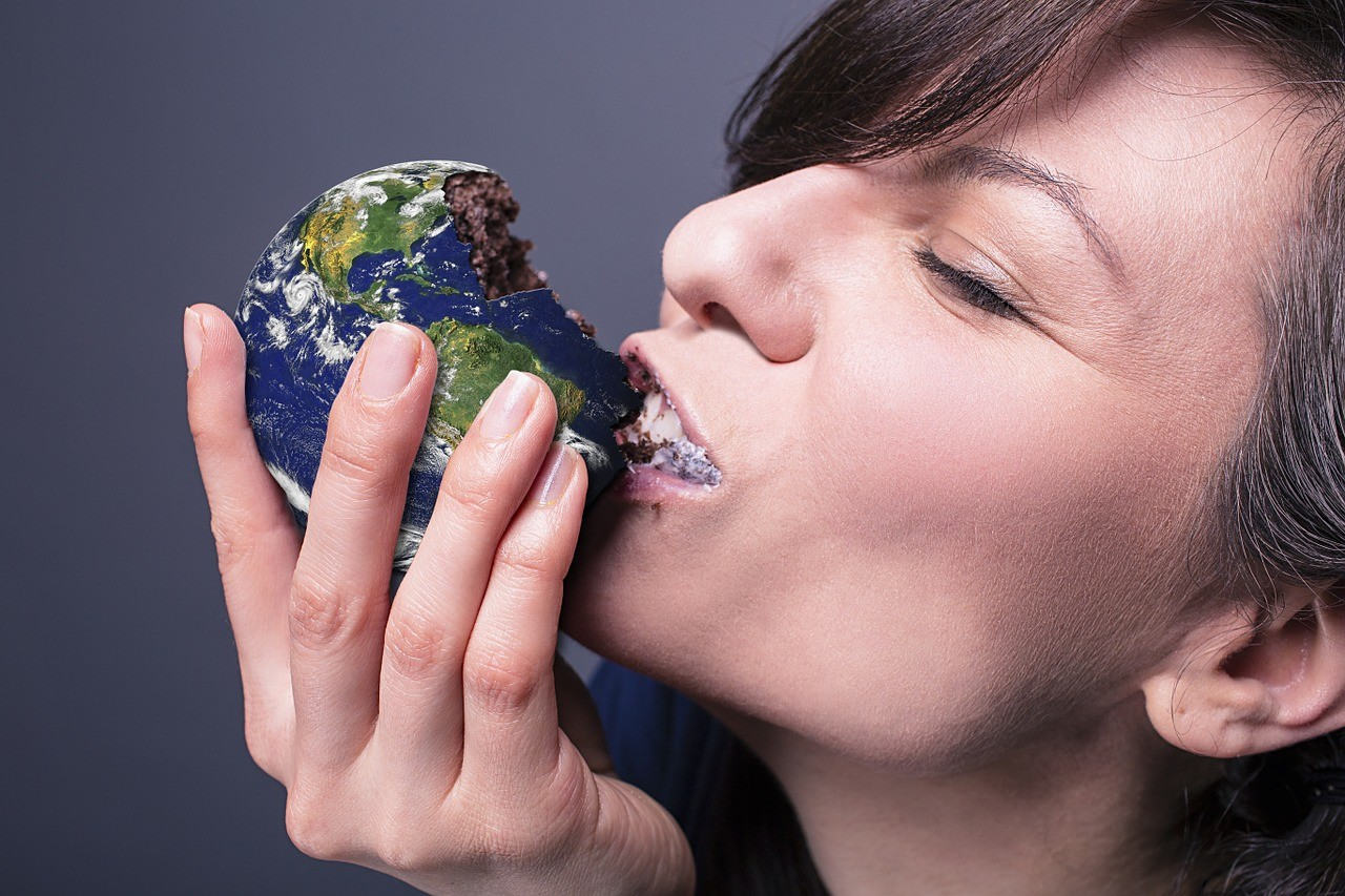 Eating World Earth Environment - reidy68 / Pixabay